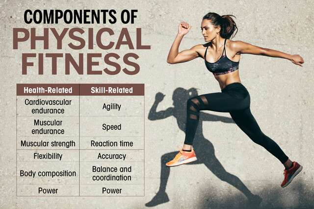 What Are the Basic Components of Fitness?